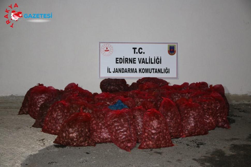 Jandarma 35 bin TL değerinde midye ele geçirdi